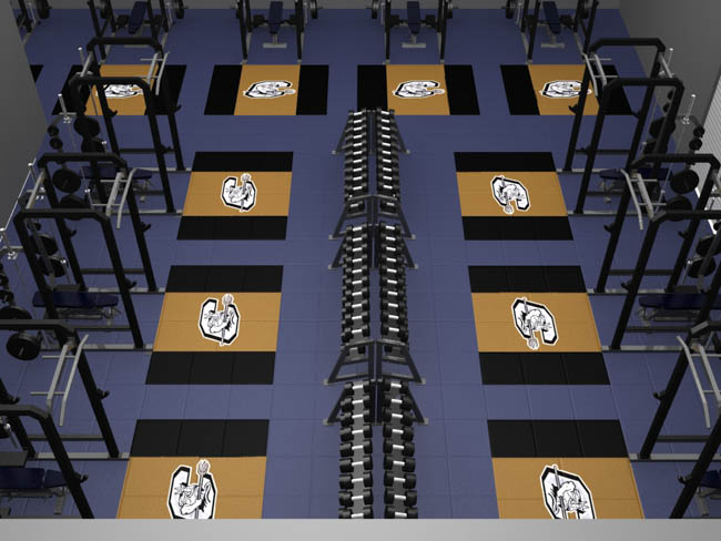 3d gym weight room fitness gym layout floorplan service.