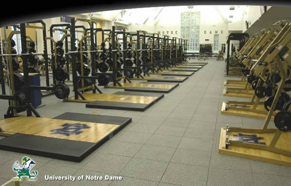 Notre Dame Inifinity Rubber Flooring